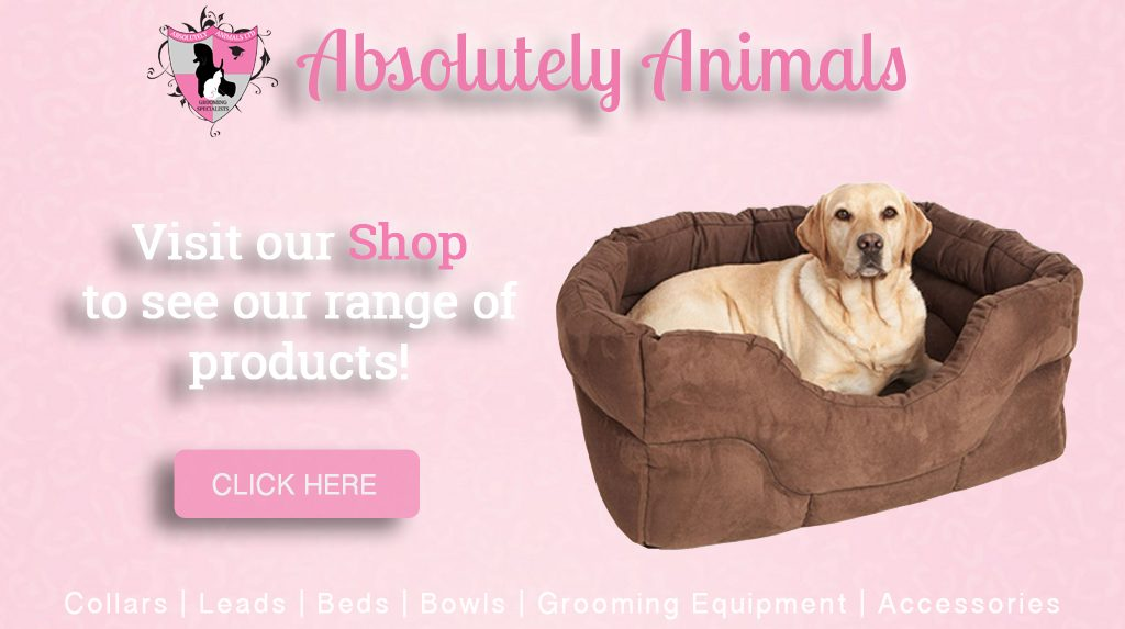 Visit our shop to see our range of products