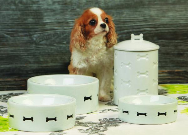 Bone Appetit Dog Bowl Enviro
