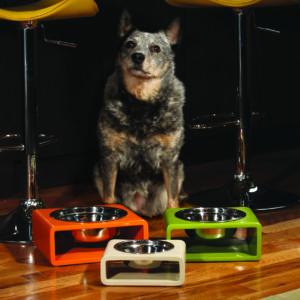Phorm Enviro 1 dog bowl
