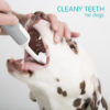 Shows a dog with Cleanyteeth 3 sided brush being used
