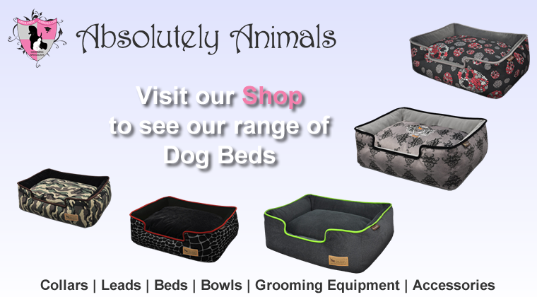 Dog Beds Shop