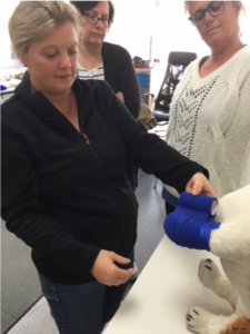 Bandaging on a dog walking course at Absolutely Animals