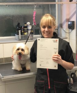 Dog grooming Courses Absolutely Animals