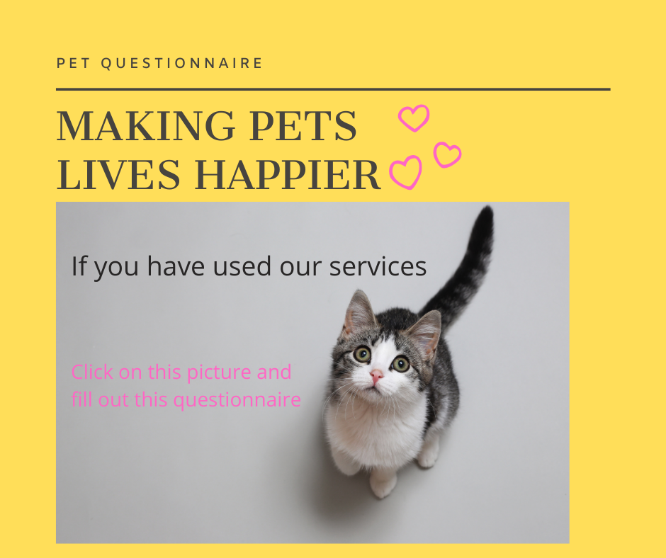Questionnaire cat